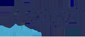 Bord Gais Logo color